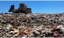Bộ TNMT yêu cầu xử lý tình trạng gây ô nhiễm của 2 doanh nghiệp xử lý rác ở TP. HCM