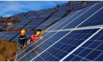Năm 2021 Việt Nam cắt giảm khoảng 1,3 tỷ kWh năng lượng tái tạo