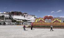 Triệu Lập Kiên: Phật sống Tây Tạng chuyển sinh cũng phải tuân thủ luật pháp quốc gia