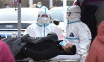 Điều tra truy vết về cách thức đại dịch Toàn cầu lây lan từ Trung Quốc