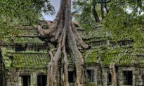 Angkor Wat: Bí ẩn về một tàn tích bị bỏ rơi