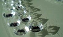Thay vì đào mỏ, một công ty ở Anh khai thác và sản xuất kim cương từ không khí và nước mưa