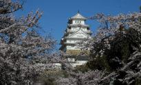 Lâu đài Himeji: Lâu đài đẹp nhất từ đầu thế kỷ 17 còn sót lại