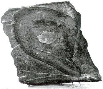 Hóa thạch dấu giày Nevada (Minghui.org)
