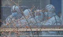 Chuyên gia WHO đề xuất điều tra địa điểm nhạy cảm: Hang dơi