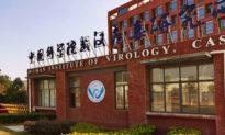 Phát hiện 'đầu mối quan trọng' của phái đoàn WHO tại Vũ Hán