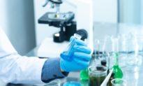Nghiên cứu đầu tiên trên người về cách Coronavirus lây nhiễm bệnh, vấn đề đạo đức là gì?