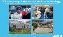 Truyền thông Trung Quốc từng đưa tin Phòng thí nghiệm 4P Vũ Hán 'nghiên cứu mầm bệnh nguy hiểm nhất thế giới'