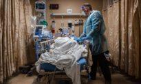 Chuyên gia cảnh báo về một đại dịch khác do virus Nipah gây ra, tỷ lệ tử vong đến 75%