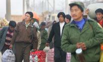 Kết hôn ít, ly hôn nhiều, dân số độc thân của Trung Quốc có thể vượt quá 400 triệu người
