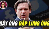 DEEP DIVE: Big Tech sẽ bị phạt 100.000 USD/ngày theo luật Florida; Nhiều công ty tẩy chay My Pillow