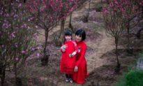 Bao giờ cho đến Tết xưa: Hoài niệm, nhớ thương và tiếc nuối…