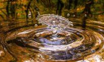Bí mật của nước tiết lộ 7 loại cảnh giới trong nhân sinh