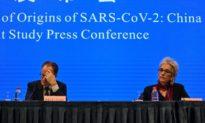 Đoàn chuyên gia của WHO không tiếp cận được với dữ liệu COVID-19 của Trung Quốc