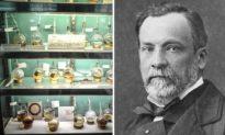 Louis Pasteur và thuyết mầm bệnh: 'Cứu tinh' của hàng triệu người và điều kỳ diệu từ phát minh này