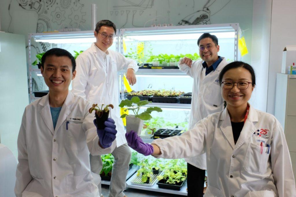 Thiết bị 'giao tiếp' với thực vật, một bước đột phá mới của các nhà khoa học Singapore