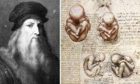 Da Vinci để lại ẩn đố về trái tim, 500 năm sau khoa học mới giải đáp được