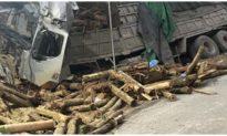 7 người đi bốc keo thuê tử nạn ở Thanh Hóa khi xe tải lao vào taluy