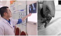 Cho tay vào máy xay hoa quả đang hoạt động, bé gái 2 tuổi ở Hà Nội phải nhập viện cấp cứu