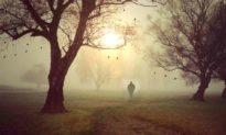 Câu chuyện cuộc sống: Chúa phải làm cho anh ta nổi điên trước khi anh ta chết