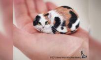 Dưới bàn tay nghệ nhân Nhật Bản, những viên đá vô tri trở thành những sinh vật siêu đáng yêu