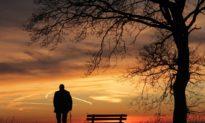 Hối hả, vội vã, chúng ta đã bỏ lỡ bao điều tốt đẹp trong cuộc sống?