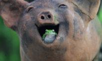 Chuyện hài hước: Khi người chậm chạp gặp người nóng vội