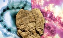 Bí ẩn loài sứa trường sinh bất tử được ghi chép trong văn tự cổ xưa