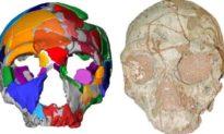 Hộp sọ hóa thạch có niên đại cổ nhất được tìm thấy ở Hy Lạp