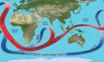 Hệ thống hải lưu tuần hoàn của Đại Tây Dương yếu nhất trong 1.600 năm, mối đe dọa đối với hành tinh