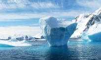 Các thềm băng tan sẽ giải phóng 'lượng nước rất lớn' khi nhiệt độ tăng 4°C