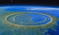 Rừng Amazon được sinh ra khi tiểu hành tinh đâm vào Trái đất đã giết chết khủng long