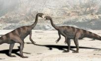 Nồng độ carbon trong khí quyển ảnh hưởng đến sự phân tán của khủng long