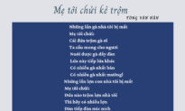 """Bài thơ """"Mẹ tôi chửi kẻ trộm"""": Tranh cãi vì sự khác biệt các """"thước đo""""?"""