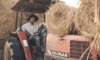 Năng suất lao động của Việt Nam tụt hậu 60 năm so với Nhật Bản, 40 năm so với Malaysia