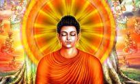 Đức Phật nói: Tám nỗi khổ của nhân sinh