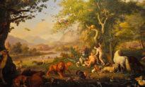 Trái cấm' của vườn địa đàng có thực sự đúng là táo?