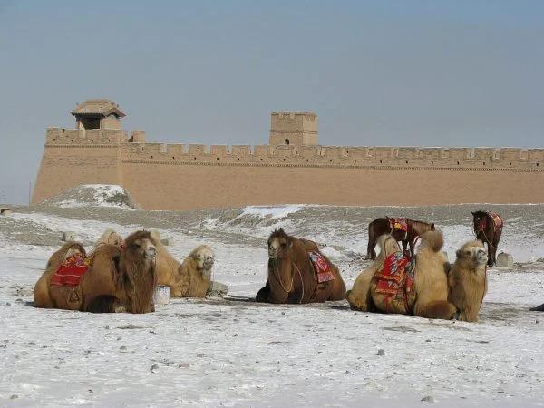 Gia Dục Quan là cửa ngõ quan trọng của Con đường Tơ lụa thời cổ đại (Ảnh: wikimedia / Emcc83)