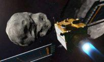 Trong thử nghiệm mô phỏng: Thế giới đã không ngăn chặn được một tiểu hành tinh va chạm với Trái đất