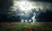 Các nhà nghiên cứu cho rằng 'linh hồn' con người là bất diệt