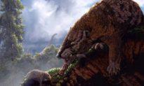 Sự tiến hóa bất thường của các loài động vật có vú thời kỳ khủng long
