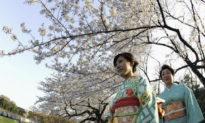 Để giữ bình tĩnh trong đại dịch Covid-19, hãy học theo tinh thần samurai Nhật Bản
