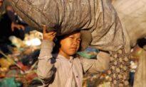 Bé trai 5 tuổi lười biếng không chịu đi học bị bố mẹ dắt ra đường... nhặt rác