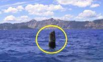Bất chấp quy luật vật lý, gốc cây nổi thẳng đứng giữa hồ ở Mỹ suốt 120 năm
