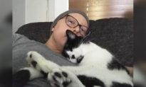 Kỳ lạ chú mèo giúp chủ nhân phát hiện ra ung thư vú