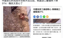 Trung Quốc: Bể muối kim chi bẩn chứa người và gầu máy múc khiến người dân phẫn nộ