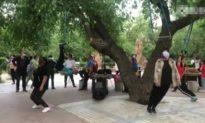 Người Trung Quốc 'treo đầu trên cây' để chữa bệnh