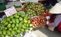 TP.HCM: 2 mẹ con bán trái cây ở cổng Cty PouYuen dương tính nCoV
