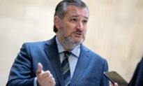 TNS Ted Cruz: Facebook có thể bị liên đới vì những email của Fauci
