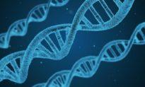 Đi sâu vào thuyết tiến hóa: Những sai lầm làm suy yếu niềm tin của con người vào Chúa